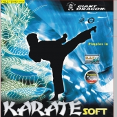 GIANT DRAGON  Karate Soft Table Tennis Rubber