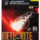 GIANT DRAGON Meteorite OX