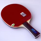 729 Friendship FS 3 stars – Table Tennis Bat
